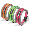 Pet Reflective Collar Leash Set Dog Nylon Padded Soft Grid eye Adjustable Perfect for Leash Collar Large Outdoor Training Dog