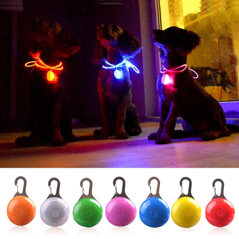 LED Flashlight Dog Collar Glowing Pendant Night Safety Light For You and Your Dog