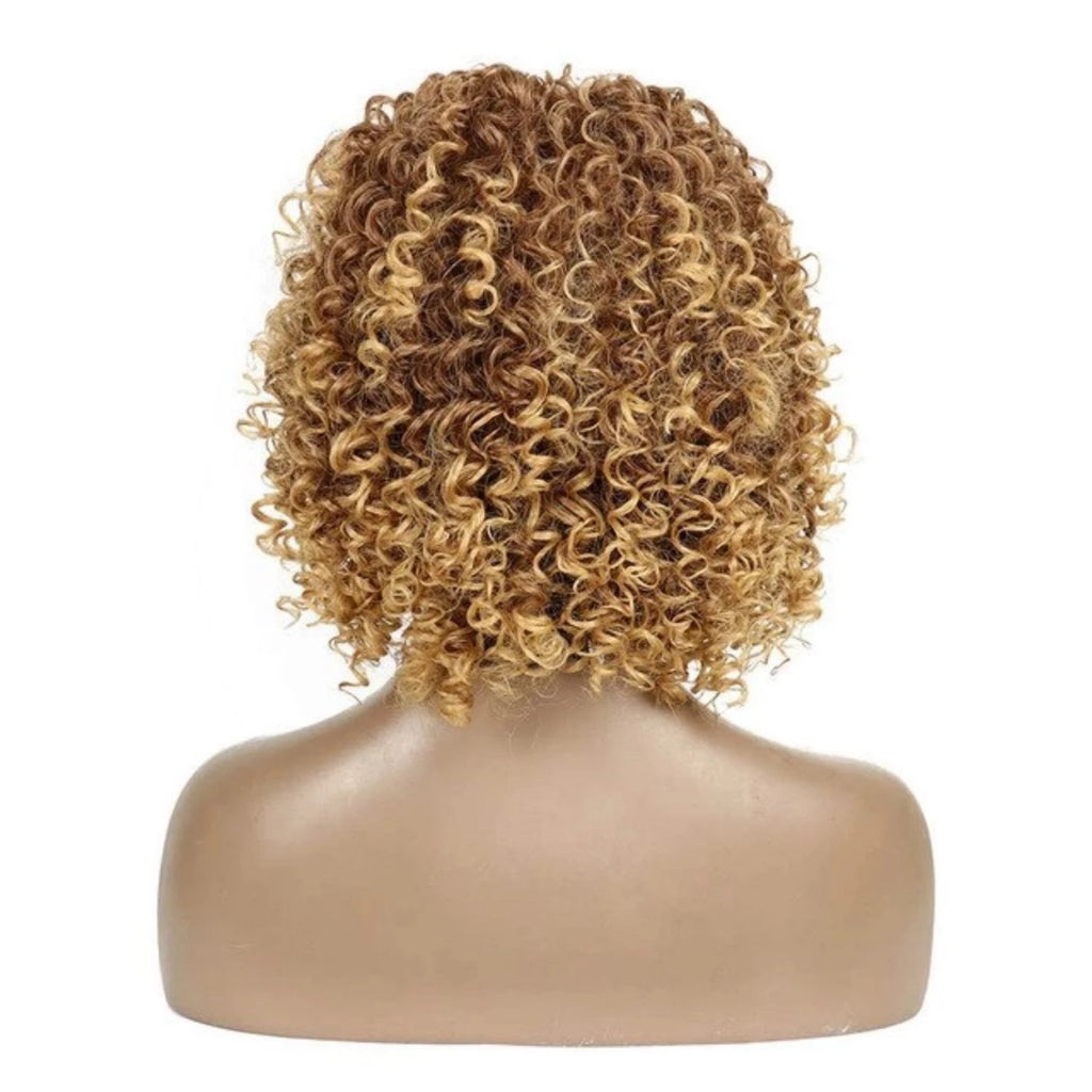 Afro Kinky Curly Wig - Fresh Hair Extensions and Accessories