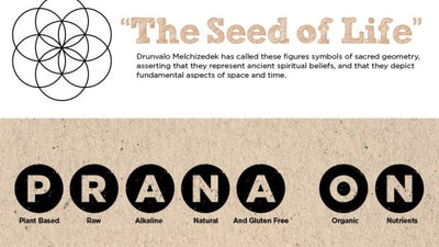 Prana – The Seed of Life