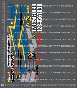 1/10TH TAM 58073 - THUNDER DRAGON DECALS