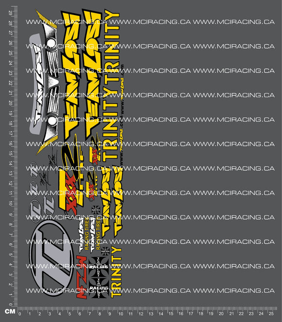 1/10TH LOSI - XXX-T MF 2 DECALS