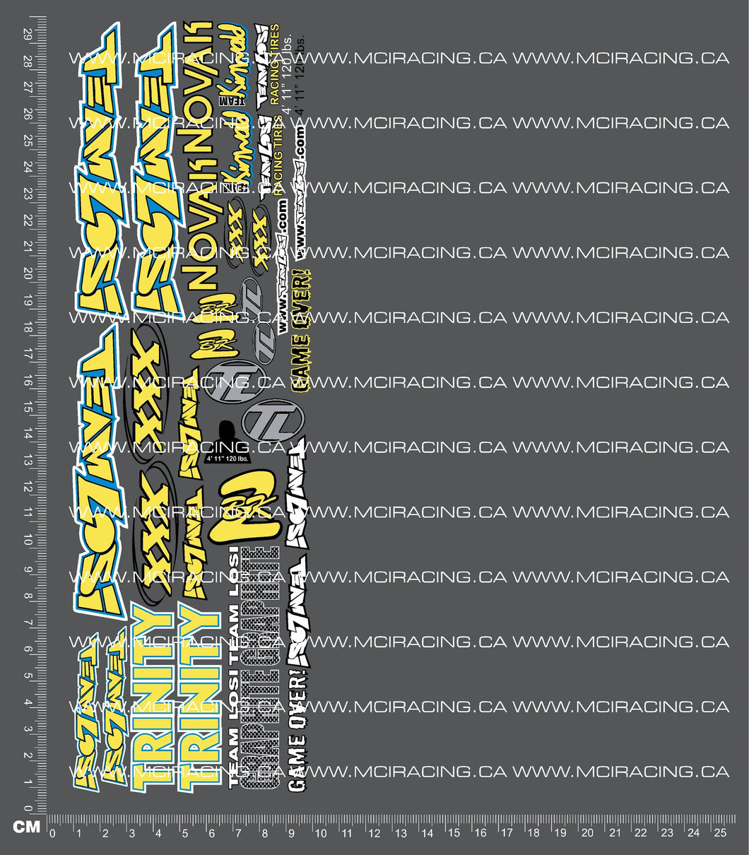 1/10TH LOSI - XXX BK2 DECALS