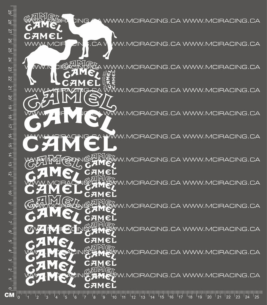 1/10TH CAMEL DECALS
