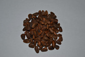 Bulk Preferred Exotic Pine Nuts - Feathered Follies