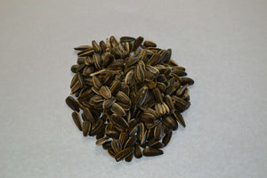 Bulk Sunflower Seed - Feathered Follies