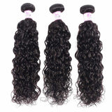Brazilian Hair 3 Bundles with Lace Frontal Water Wave Hair 100% Human Hair