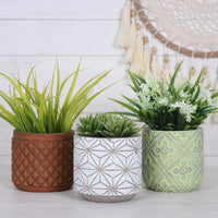 Lime Patterned Green Plant Pot Image