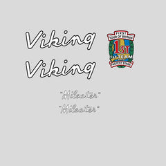 Viking Set 110