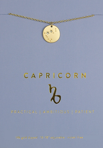 Capricorn Zodiac Necklace - Indie Indie Bang! Bang!