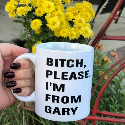 Bitch, Please. I'm From Gary - Indie Indie Bang! Bang!