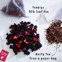 Load image into Gallery viewer, Tea Pigs - Superfruit Tea - Indie Indie Bang! Bang!