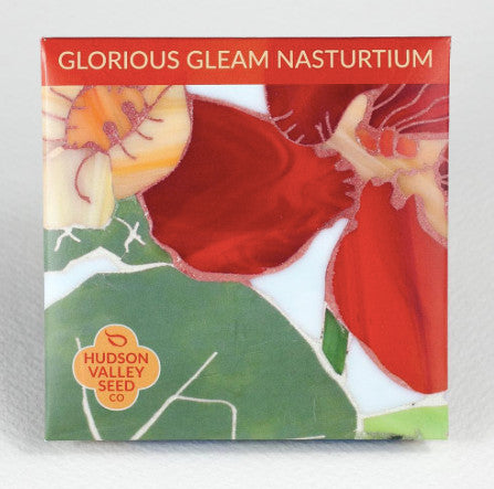 Glorious Gleam Nasturtium Seeds - Indie Indie Bang! Bang!