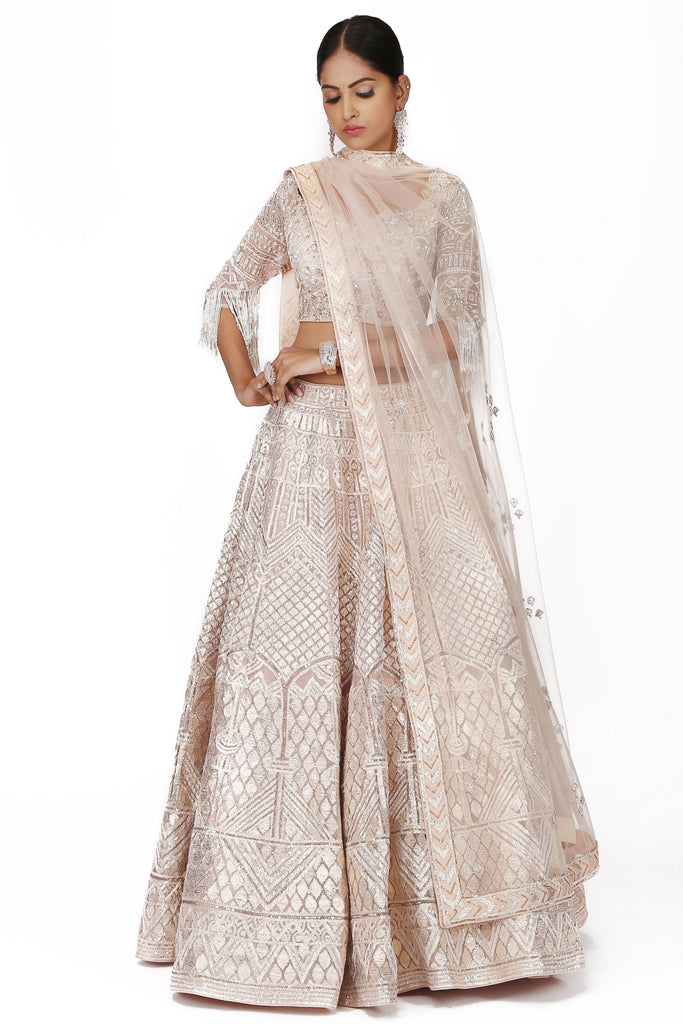 Blush pink Embroidered Lehenga Set.