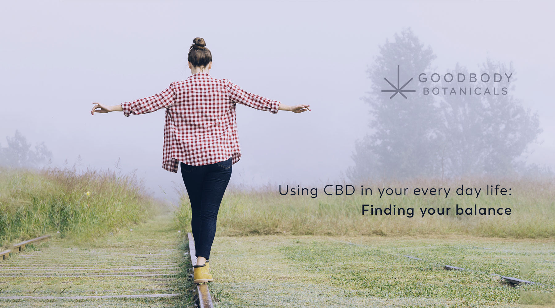 Using CBD in your every day life