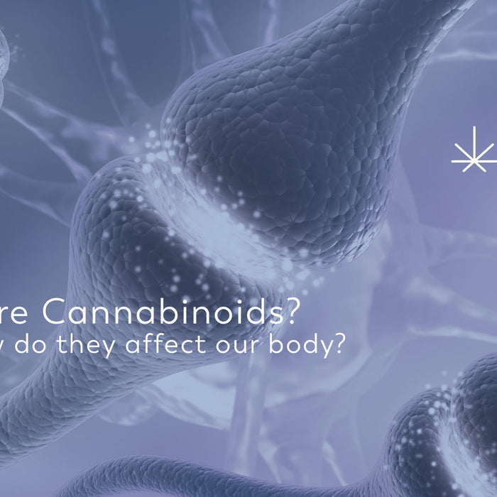 What are Cannabinoids?