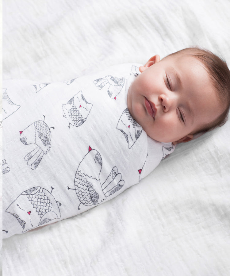 Aden + Anais Classic Swaddles 4 Pack - lovebird