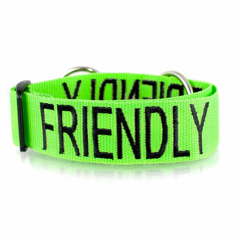 FDC - Friendly L/XL Clip Collar