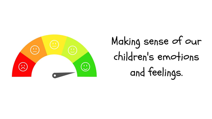Making sense of our children's emotions and feelings!