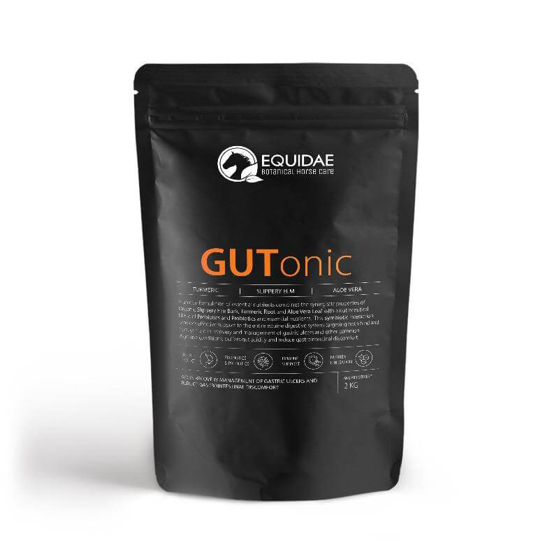 Gutonic horse probiotic to help with horse hind gut ulcer treatment