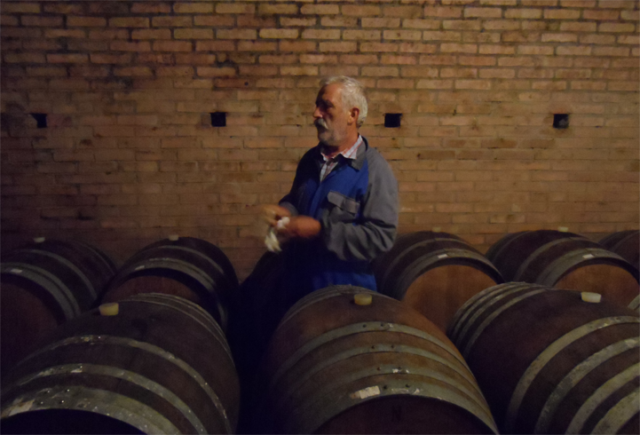 Vintage 2015 Progress Report – Langhe, Piemonte