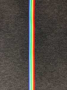 Retro Rainbow Stripe Shorts