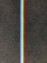 Load image into Gallery viewer, Retro Rainbow Stripe Joggers