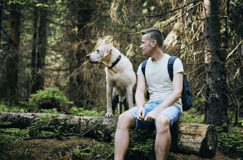 Dog and his owner enjoying nature
