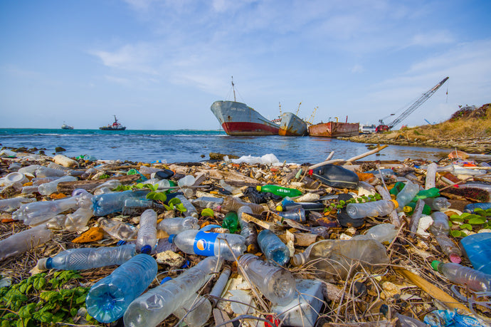 How much plastic pollution is in our oceans?