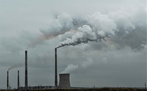 carbon emission from an industry it is possible to calculate its carbon footprint