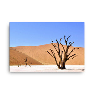 Withered Tree on a Desert Canvas Print