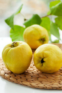 Quince for ThermoBiz
