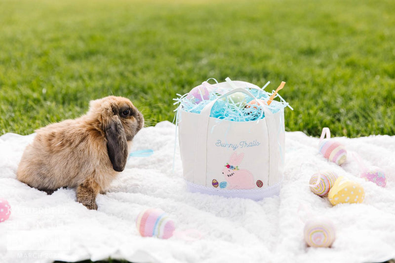 Fill In The Blank - Kimberbell Bunny Basket Kit