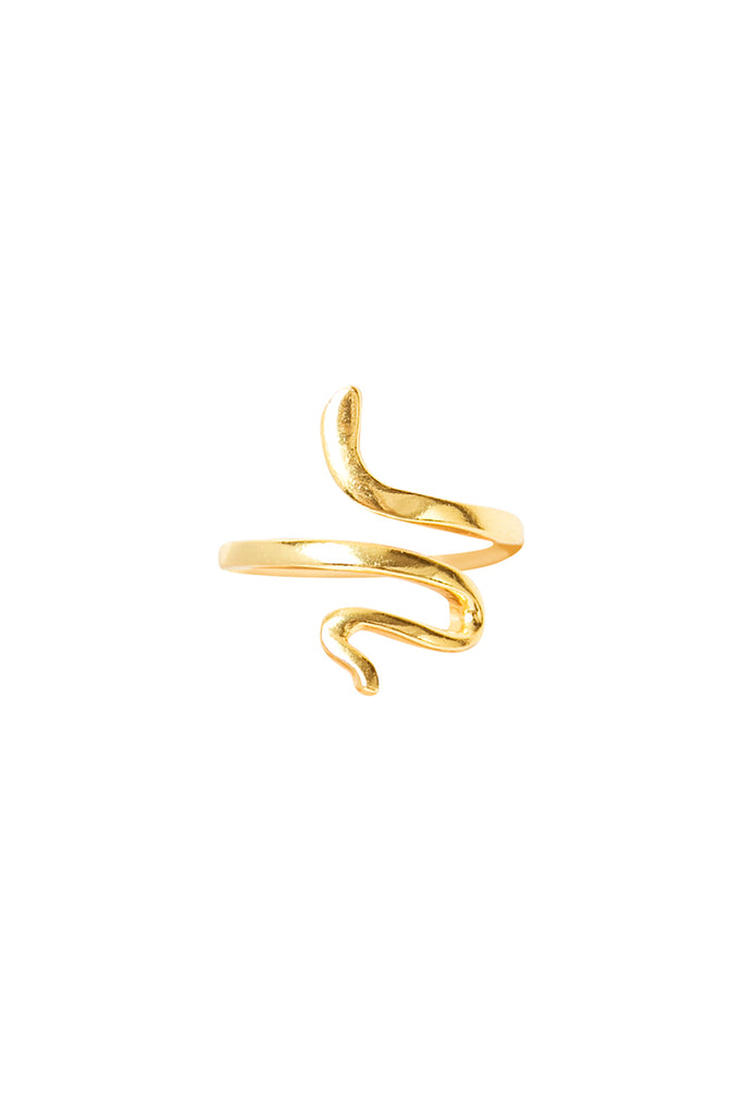 Gold Fidi Ring