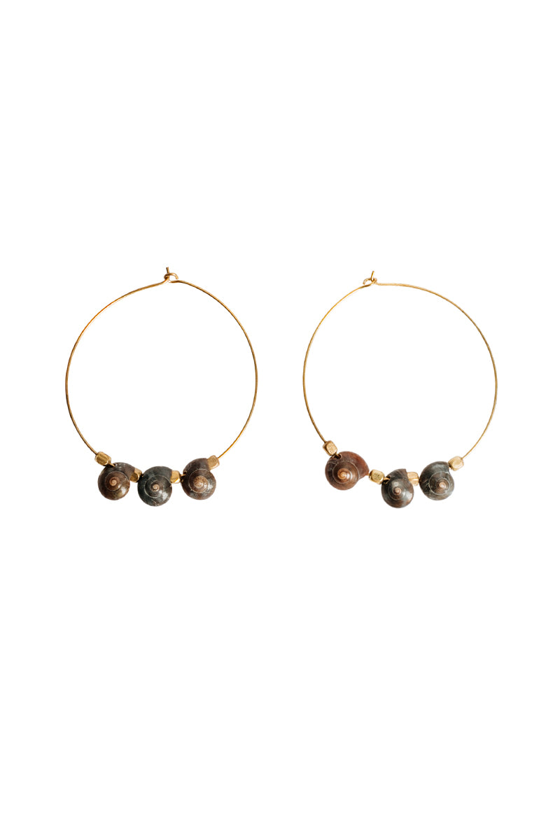 Three Shell Hoops