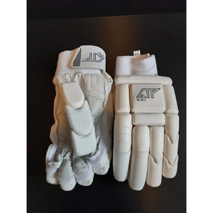GTP Cricket 2020 Hybrid Batting Gloves - The Cricket Store