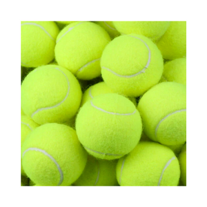 Feed Buddy Tennis Balls (6 Pack) - The Cricket Store