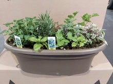 Load image into Gallery viewer, Herb Planter
