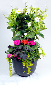"Mixed Patio Planter 21""  (Available at the End of May)"