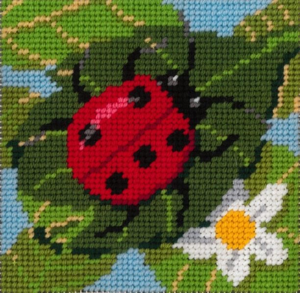 Beginner Needlepoint Kits Lady bug