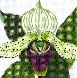 Cattleya purple Orchid needlepoint by Julie Mar