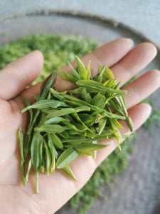 "2021 Early Spring ""Long Jing"" (Dragon Well) A++ Grade Green Tea ZheJiang"