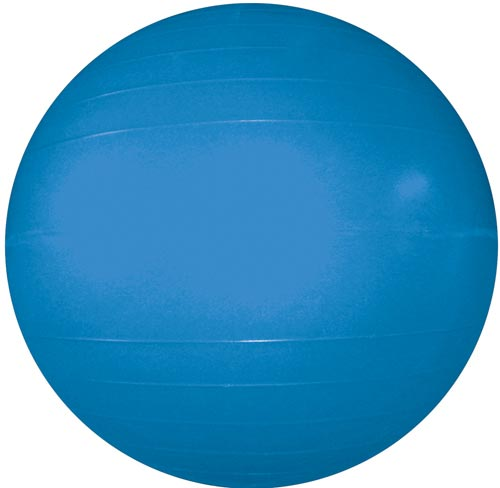 "Therapy/Exercise Ball - 55cm/22"" (Blue)"