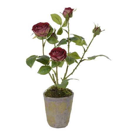 Faux Burgundy Rose Potted