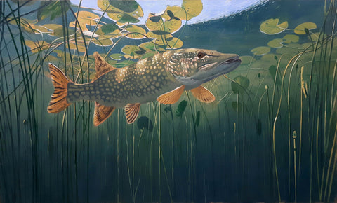 pike oil painting by david miller