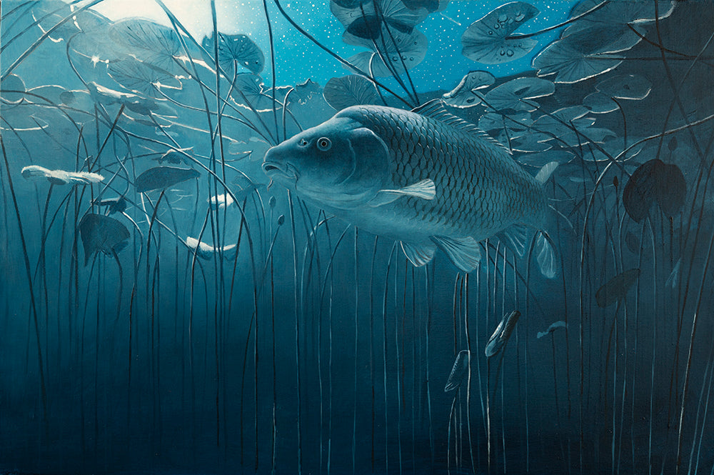 Moonlit Midnight - Carp in the Lilies