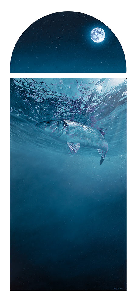 by the light of the silvery moon european bass fish art print by wildlife artist david miller