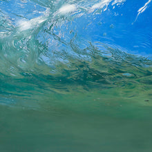 Load image into Gallery viewer, Bass in the Surf Zone (Triptych)
