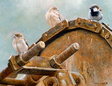 Load image into Gallery viewer, Down on the farm house sparrows open edition bird art print by david miller