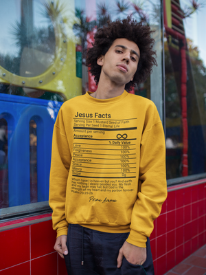 Black Jesus Facts Sweatshirt